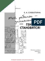 24620.pdf