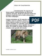 Zoológico de Guayllabamba