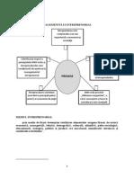 IMM.pdf