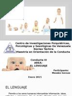 Lenguaje Presentacion (Conducta III)