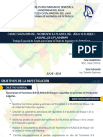 CARACTERIZACIÓN DEL YACIMIENTO B-8 VLA0016 ,DEL  ÁREA 16 BLOQUE I LAGUNILLAS U.P LAGOMAR