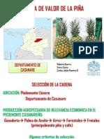 Cadena de Valor Piña Casanare Colombia
