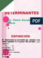 UCP Determinantes ( 2014-1)