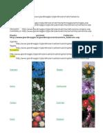 Come coltivare le Piante Aromatiche.docx