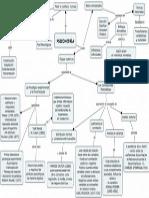 Psicometria Mapa Conceptual