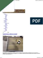 Aproape totul despre lemn, mobila, amenajari sau case - Stejar Masiv.pdf