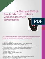Norma Oficial Mexicana SSA014 Para La Detección Del Cáncer Cervico Uterino