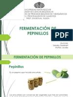 Fermentación de pepinillos.pdf