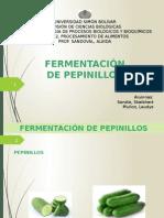 Fermentación de pepinillos.pptx
