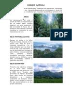 BIOMAS DE GUATEMALA.docx