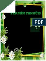 Don Fermín Tangüis