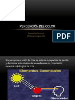 Vision Del Color/ sensacion y percepcion