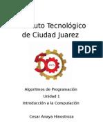 Cesar Anaya Unidad 1