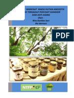 Kajian Manfaat Madu Hutan Anggota JMHI Terhadap Penyakit Kangker Dan Anti Aging
