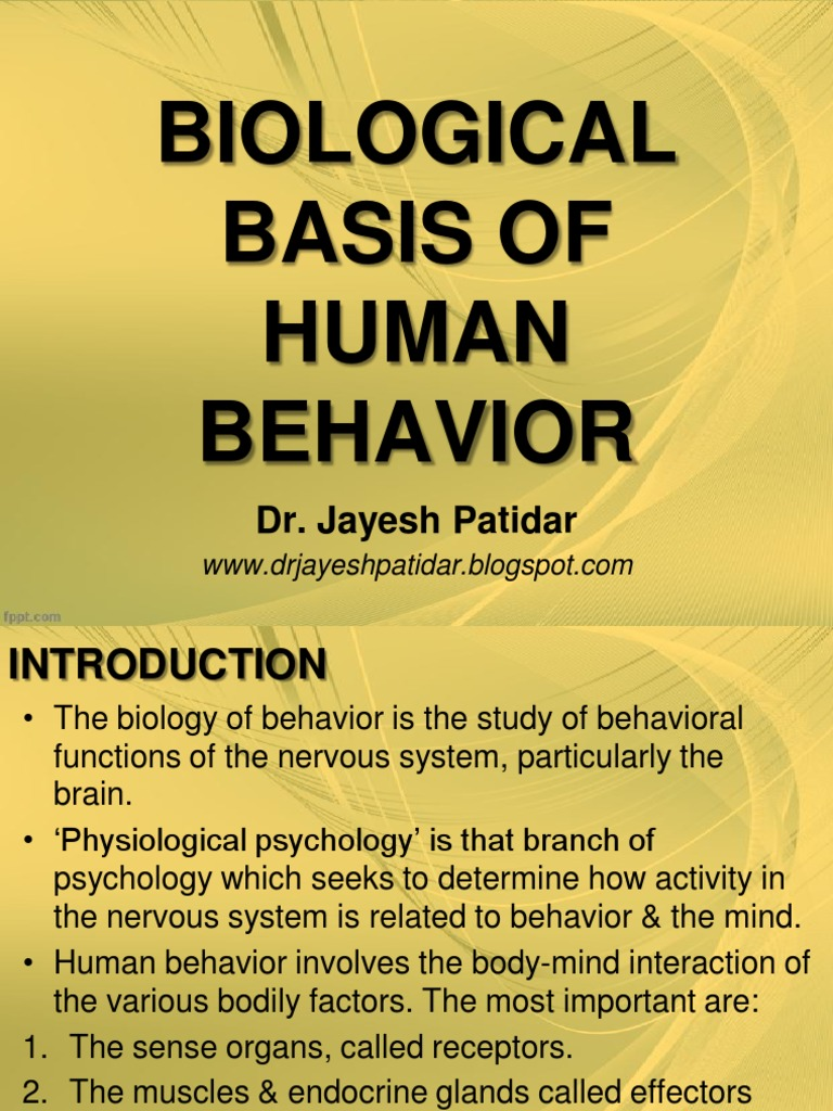 what do you call the study of human behavior