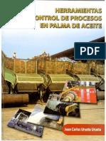 Processo de Palma Espanhol
