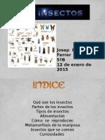 LOS INSECTOS.pptx