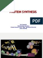 Protein Synthetis
