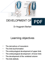 FMS II DEv of Limb.ppt