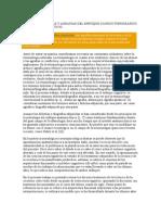 Capitulo v Alexias y Agrafias Del Enfoque Clinico Topográfic