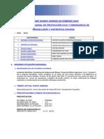 Informe Diario Onemi Magallanes 06.02.2015