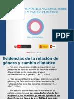 Primer Diagnóstico Nacional Género y CC – Isabel Felandro & Marieliv Flores 12Nov14