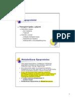 Metabolizam_lipida_3.pdf