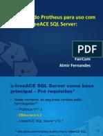 C-tree Configurando Protheus