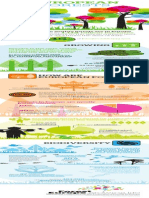 Infographic  on European Forests