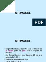 2stomac+gastrite