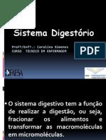 AULA 1 Nutrição - Sistema Digestório
