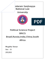 Political Science Project On BRICS