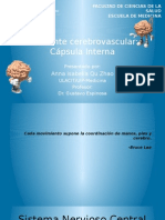 Acv Capsula Interna