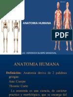 Anatomia Clase 1