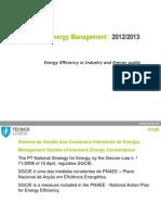 T_06_SGCIE_Energy Audits.pdf