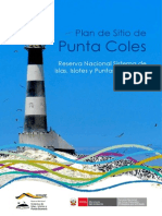 Plan de Sitio de Punta Coles