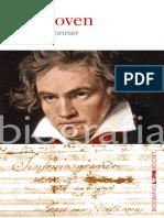 Beethoven - Bernard Fauconnier