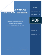 Maple Leaf cement Power flow internship Report