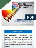 Funciones Del Psicologo de Ee. 2013-2014 - Gestalt Copia