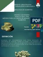 22. Mohos y Levaduras (Nom-111)