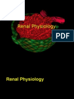 Renal Phsyiology
