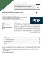 Molecular Mechanisms of Regulated Necrosis