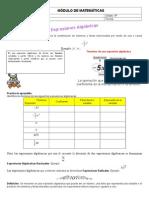 Módulo de Matemáticas Algebra
