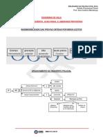 058_Esquemas_Inquerito_e_Acao_Penal_Liberdade_Del_Civil_2014.pdf