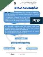 36671slides_resposta_a_acusacao(1).pdf