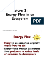 Lecture 3 - Flow of Energy