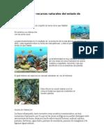 Biodiversidad y recursos naturales del estado de tabasco.docx