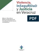 Violencia Inseguridad y Justicia en Veracruz