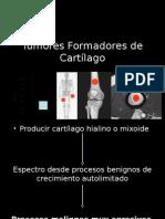 Tumores Formadores de Cartílago
