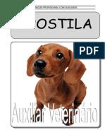 auxiliar_veterinario.pdf